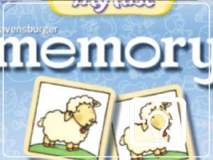 bso activiteit - memory maken