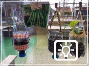 bso activiteit - plantseizoen